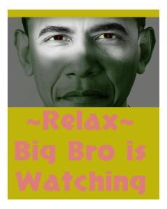 Obama-big-brother2 copy